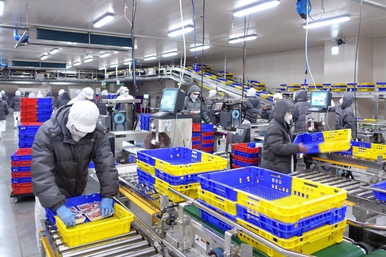 全聯五股PC廠SORTER自動化系統每小時處理6,000籃商品。記者沈佩臻/攝影