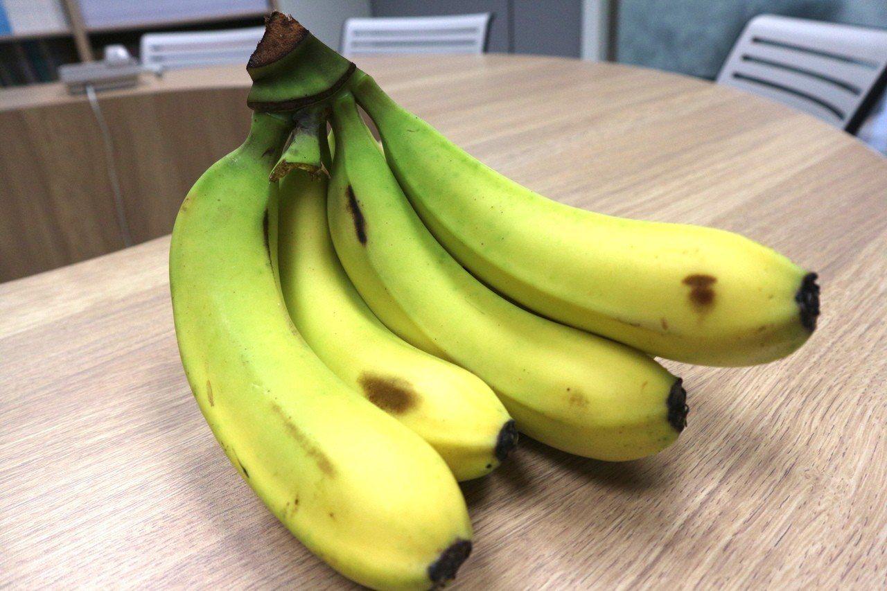 營養師分享香蕉搭配優酪乳、牛奶吃更加好。記者陳雨鑫/攝影