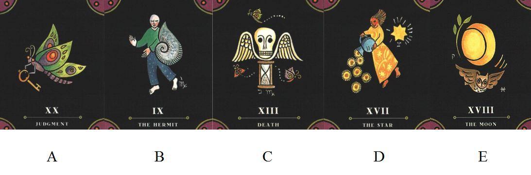 請憑直覺選擇一張牌。 圖/小孟老師提供