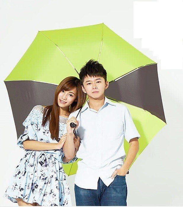 雙龍牌140公分超大傘面雨傘,促銷價399元。圖/momo購物網提供