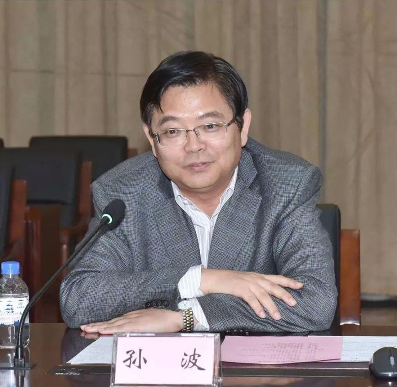 中國船舶重工總經理孫波。圖/搜狐