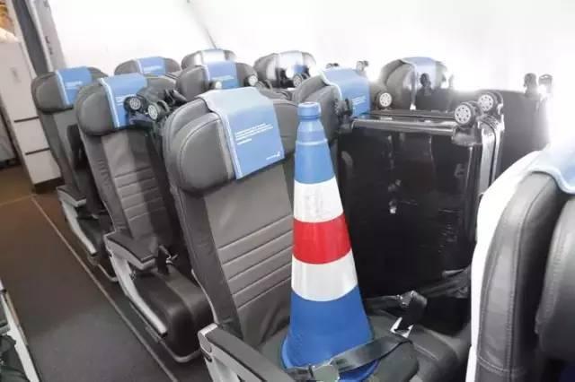 冰島吉祥物「路障」確實有專屬機位。 擷圖自網路