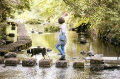 差點變成加蓋河!日本這條「臭水溝」40年後變身日版威尼斯