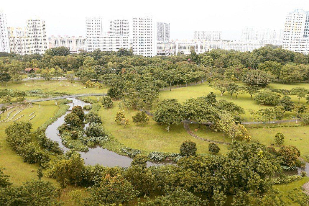 新加坡加冷河改造後,讓河流轉幾個彎流進公園,原本只有十七到廿四公尺的河道,更大幅...