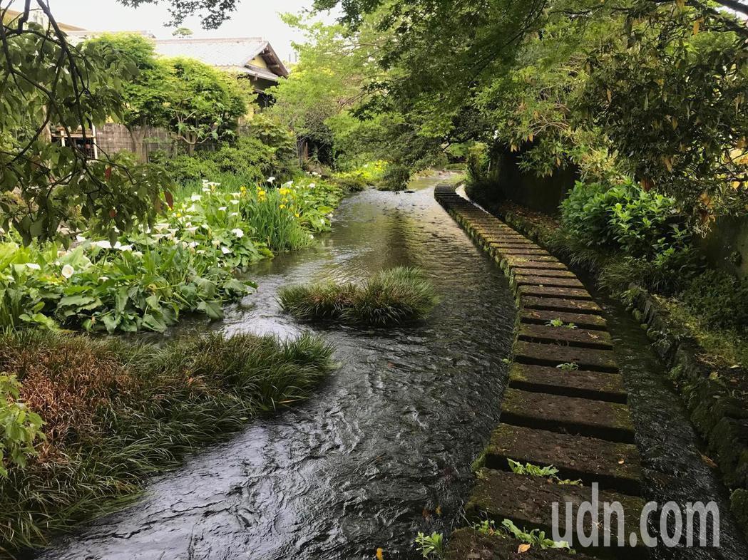 台灣公部門最愛考察的日本靜岡縣三島市源兵衛川,當地透過社區營造,把半世紀前像臭水...