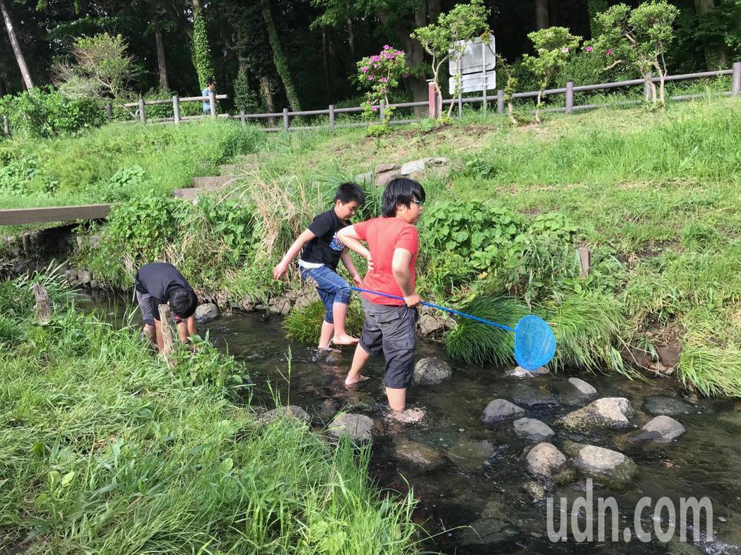 日本橫濱市和泉川「還地於河」,營造生物棲地,孩子放學後可抓蝦玩水。記者洪敬浤/攝...