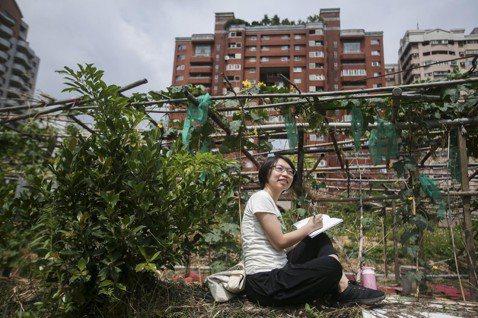 金欣儀曾出版過《棄業日記》,寫她「來去鄉下住N晚」的故事,引起轟動,許多年輕人嚮...