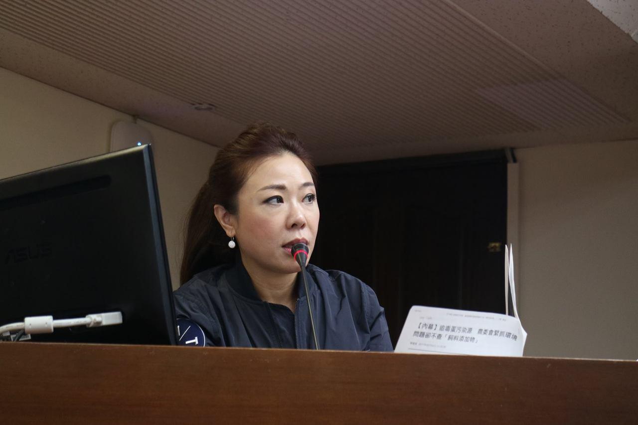 國民黨立委李彥秀。圖/李彥秀辦公室提供