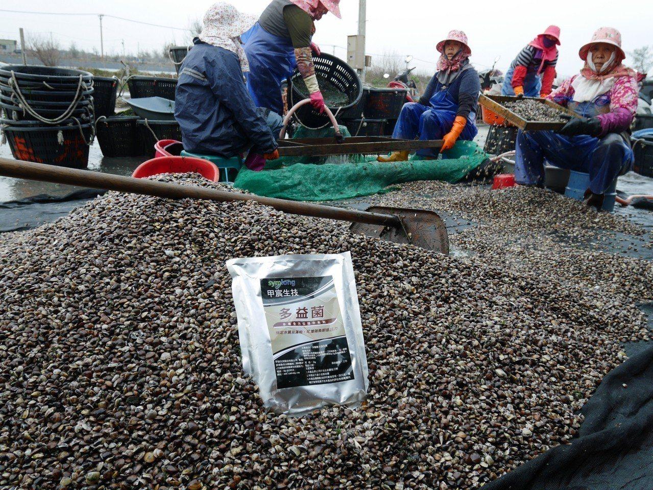 「甲宸生技」以多項微生物益生菌產品幫助漁民們滿載而歸。 甲宸生技/提供