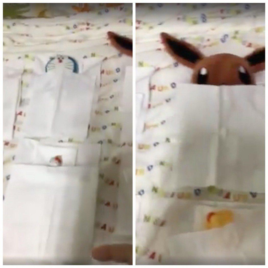 弟弟以衛生紙鋪好枕頭棉被,再為玩具們一一蓋上棉被。圖/截自《爆料公社》