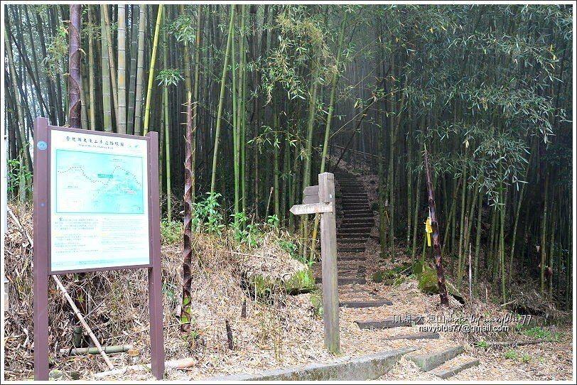 ↑竹林產道後接竹林枕木步道。