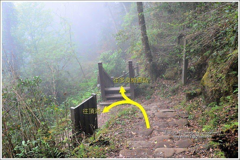 ↑下山第一個叉路要取左線往頂湖。