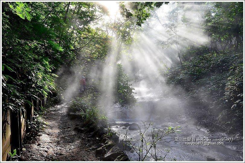 ↑早晨的大湯沼川,在初陽之下的林隙光美極了。