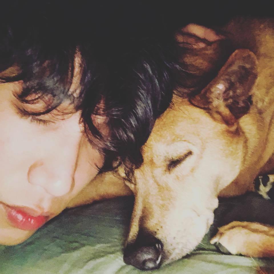 劉以豪的愛犬Yellow突然過世。圖/摘自臉書
