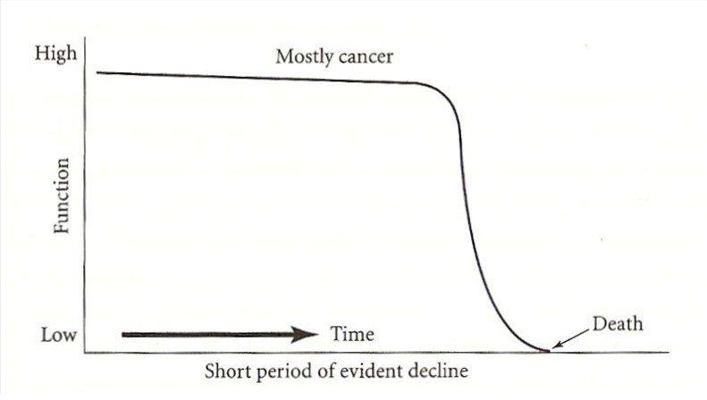 圖1:驟然而至的死亡歷程。 圖/截自網路