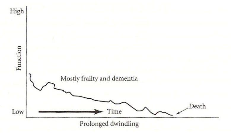 圖3:自然衰老的死亡歷程。 圖/截自網路