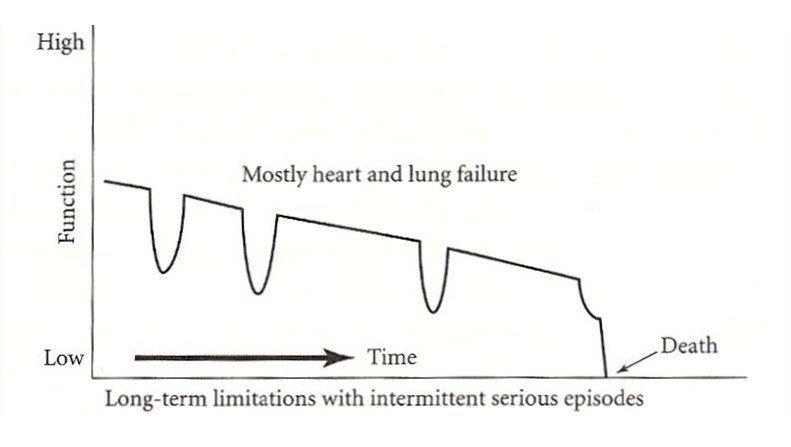 圖2:慢性疾患侵蝕的死亡歷程。 圖/截自網路