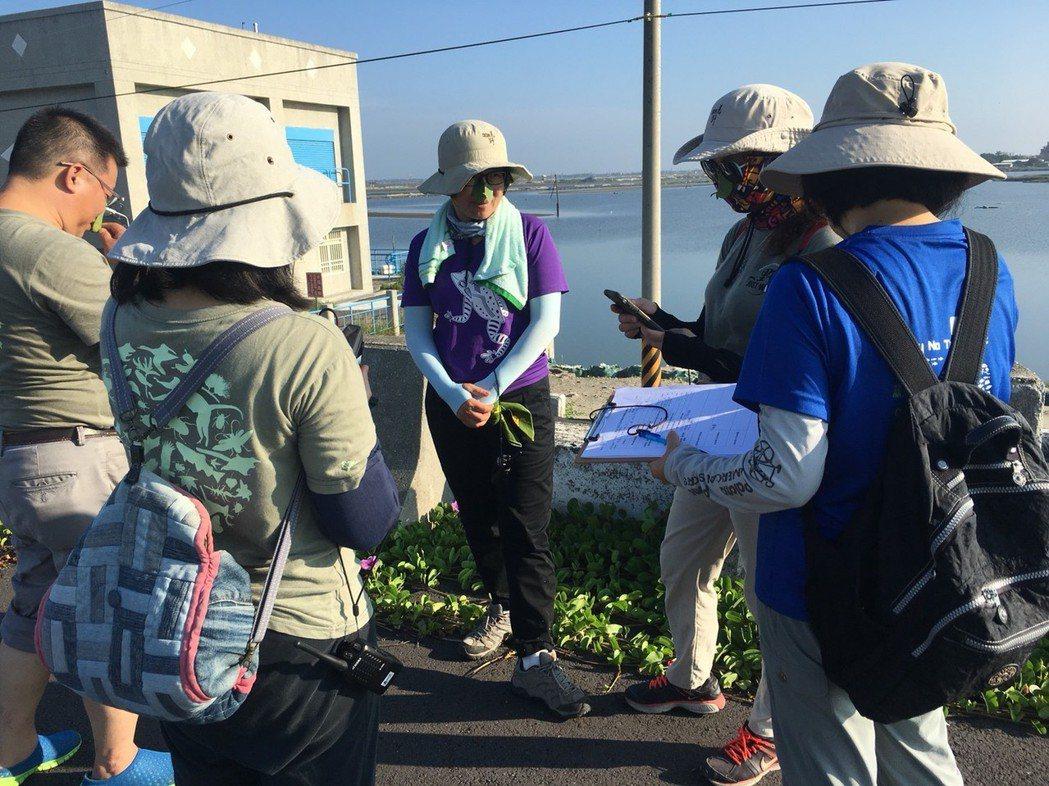 荒野保護協會嘉義分會志工費時一周,徒步完成嘉義縣沿海東石鄉及布袋鎮海岸行腳,發現...