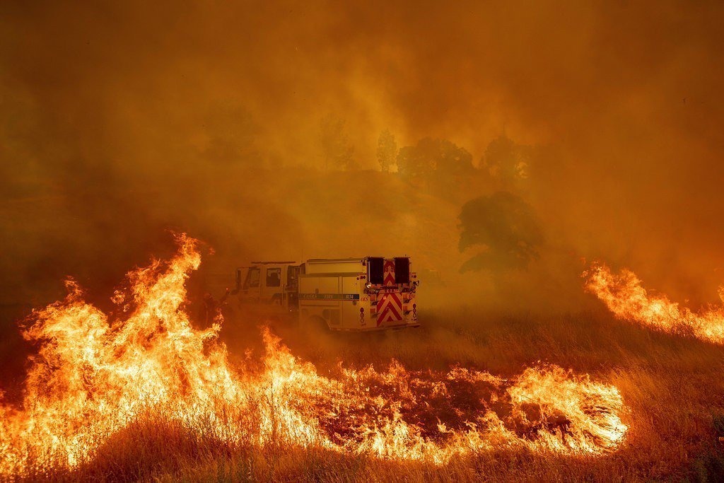 加州野火。美聯社