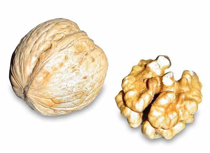 圖說:美國加利福尼亞大學洛杉磯分校研究顯示,吃胡桃能降低罹糖尿病風險。(phot...