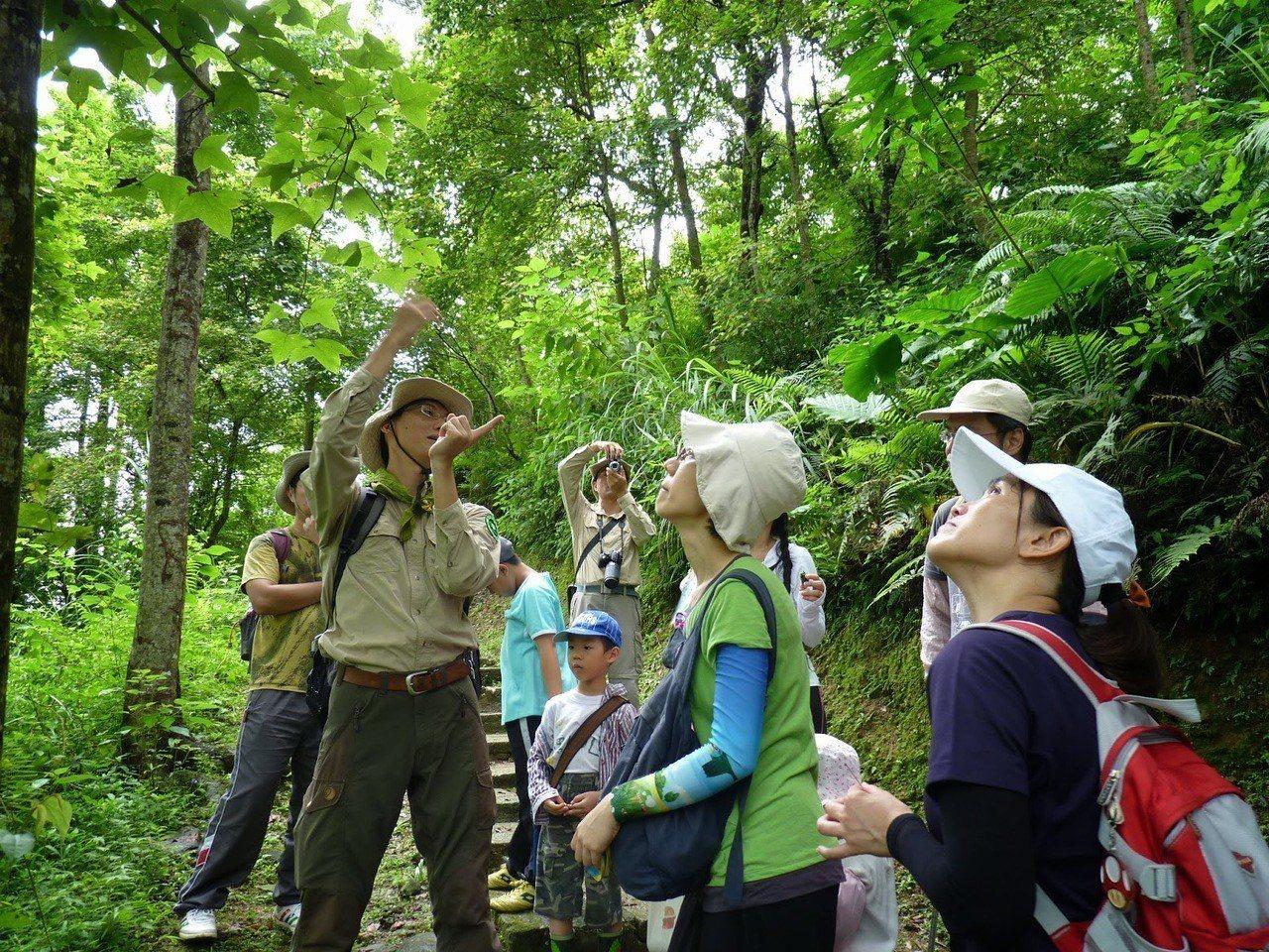 荒野保護協會花蓮分會帶領大家探索生態之美。 圖/荒野保護協會提供