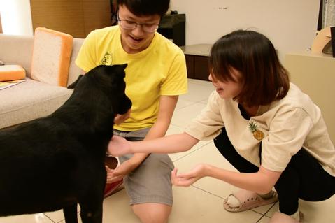 Lucy(左)以訓犬師的專業能力教導民眾如何正確的和狗狗相處互動。圖/生命力新聞...