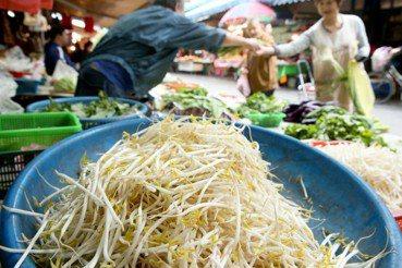 菜市場的法律學:摩托車與豆芽菜