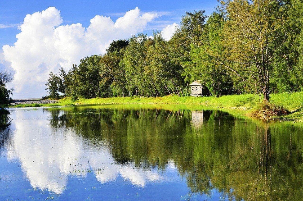 台東森林公園的琵琶湖美景。圖/王源泉提供
