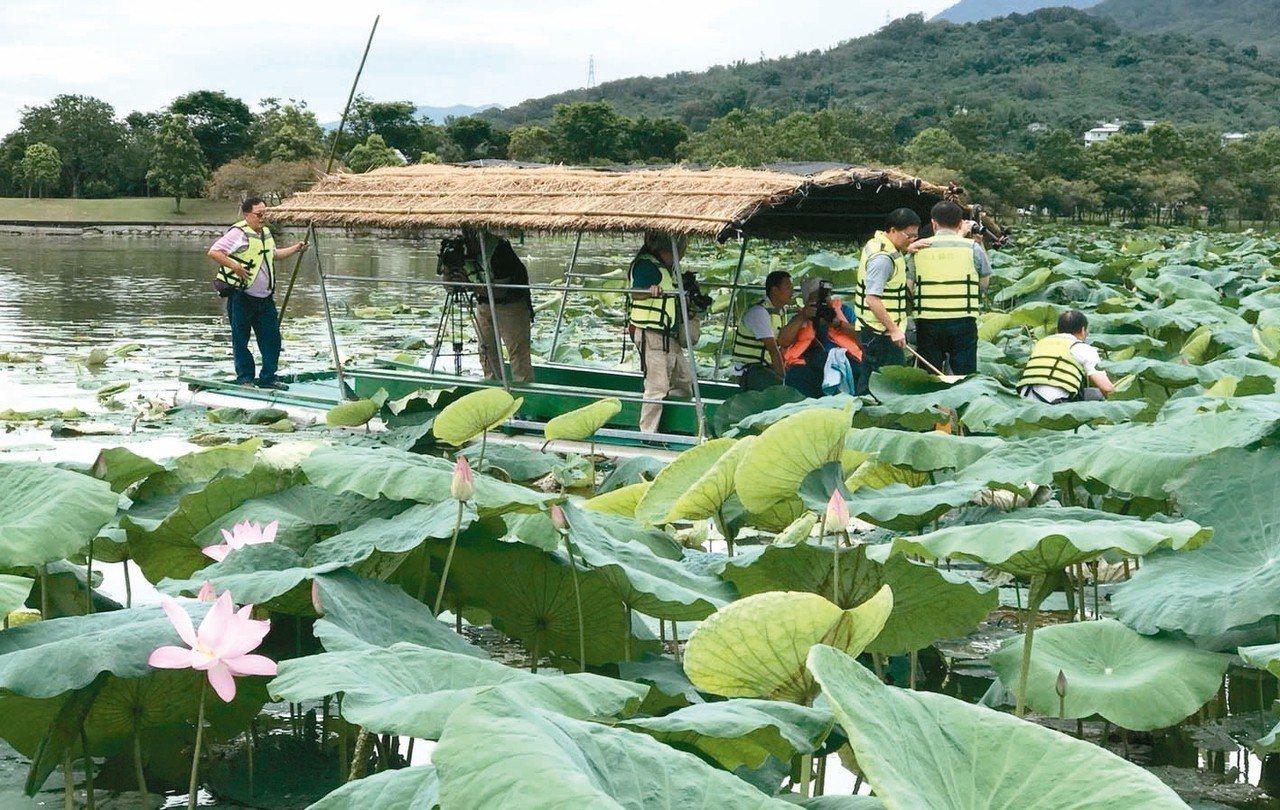 池上鄉採蓮季登場,即日起至8月31日止開放搭竹筏賞蓮、採蓮。 記者羅紹平/翻攝