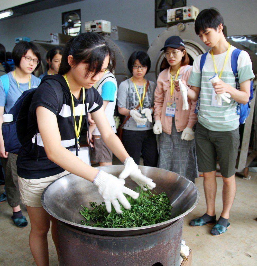 學員體驗手工炒茶。 新北客家局/提供。