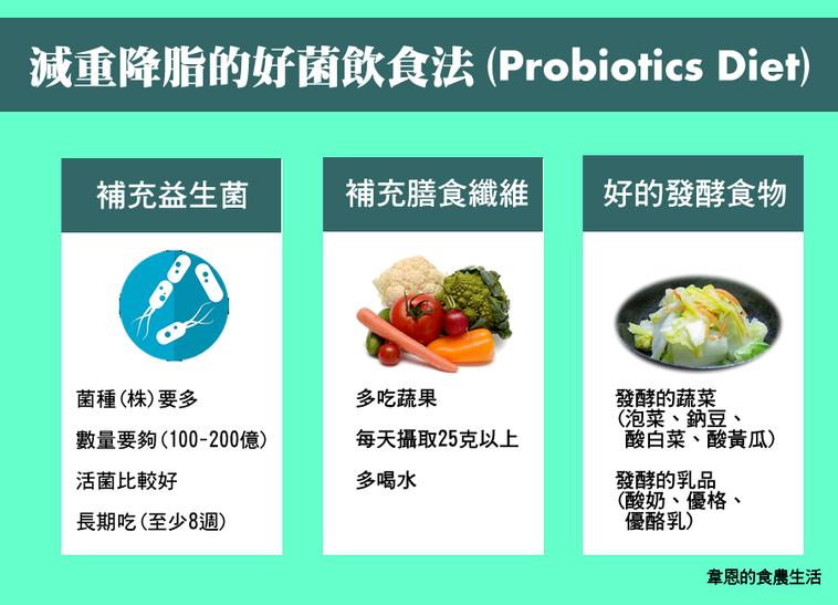 減重降脂的好菌飲食法。圖/韋恩的食農生活