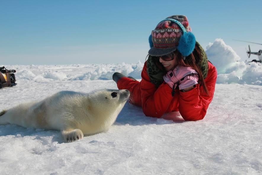 (圖)聚焦全世界《拯救北極小白仔 聚焦北冰洋》