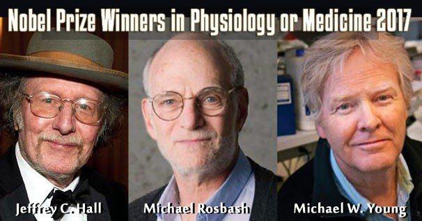 2017年諾貝爾生理醫學獎頒給美國三位遺傳學家:霍爾(Jeffrey C. Ha...