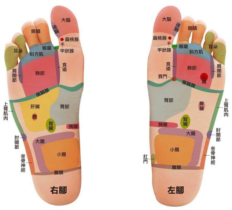 圖/摘自《驚人的足療對症按摩》