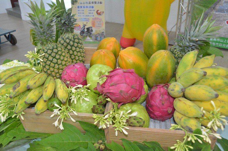 夏季水果。 記者吳淑玲/攝影