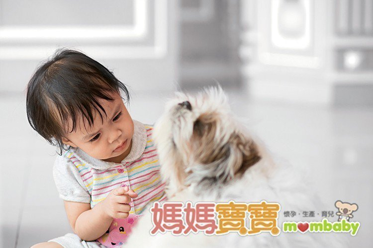 (圖片/媽媽寶寶雜誌提供)