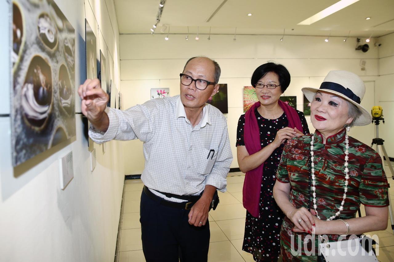 聯合報發行人王效蘭(右)下午前往「荷詩對話~~ 吳景騰追荷攝影展」觀展,對攝影家...