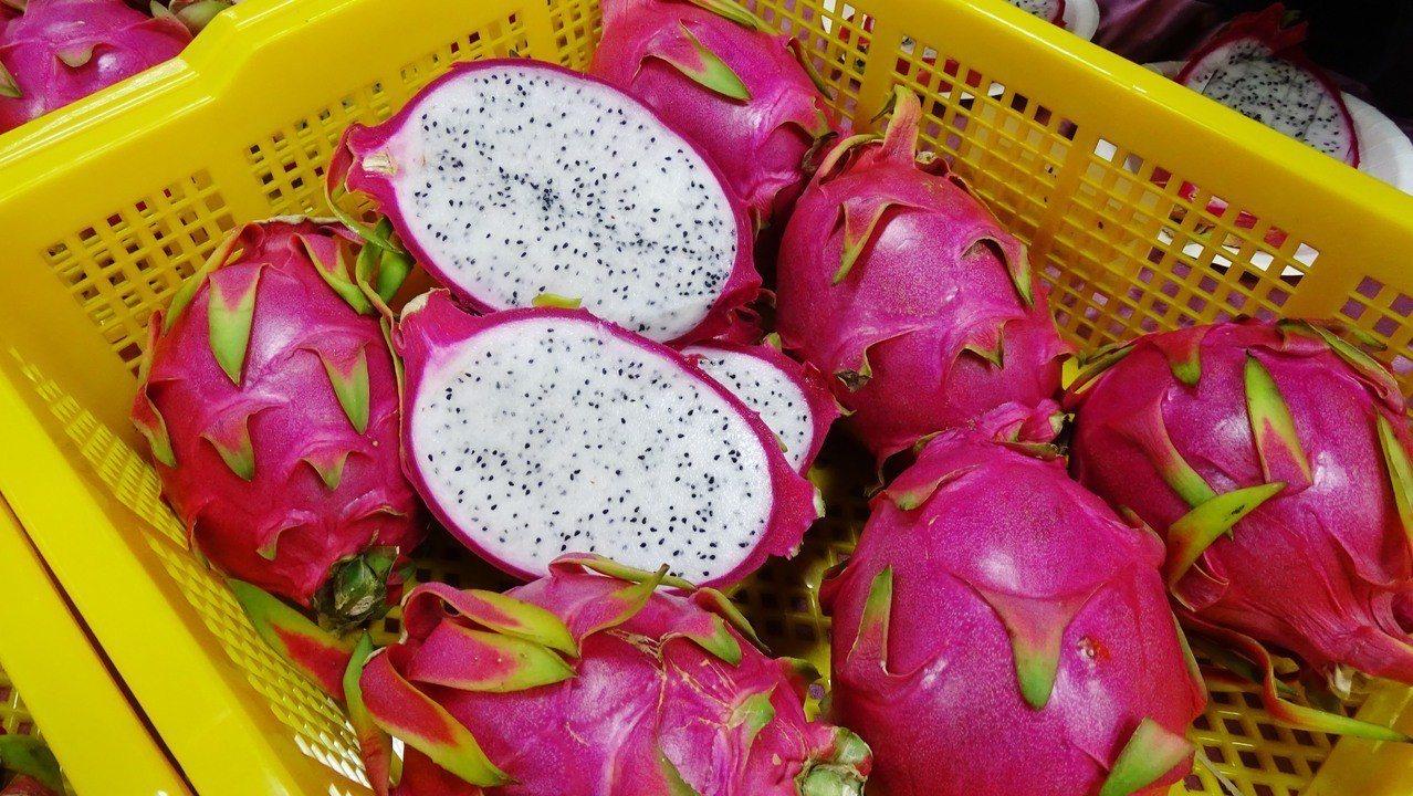 彰化縣二林鎮是台灣最早推廣、也是種植面積最多的紅龍果之鄉,品質和產量也是全台有名...