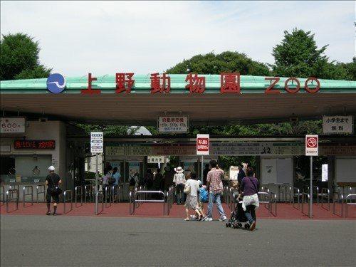 上野動物園。 圖/locationbox.metro.tokyo.jp