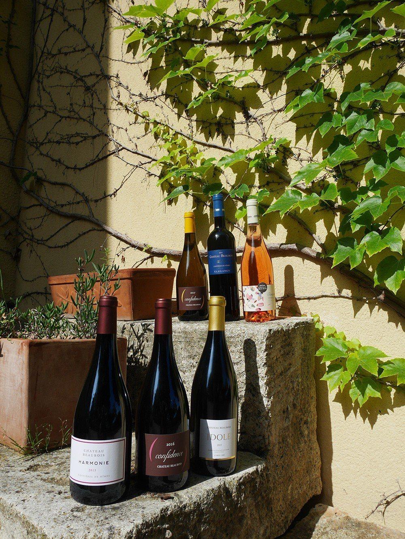 夏天以自駕的方式由南法,逛酒莊品葡萄酒是最愜意的旅行方式,每家酒莊都會備有5-6...
