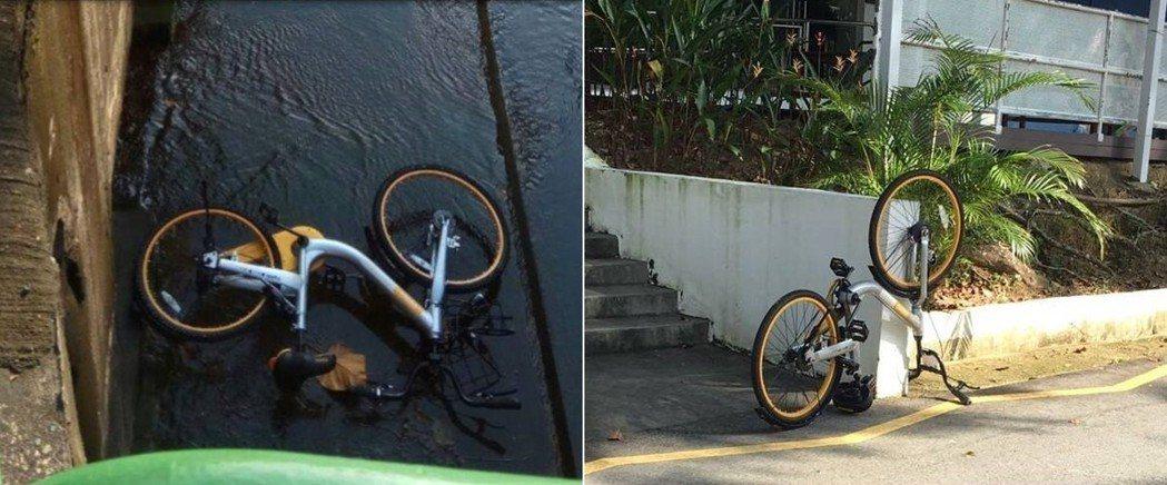 oBike 的新加坡官方社群網站,時常登出 oBike 遭到惡意破壞、亂丟到運河...