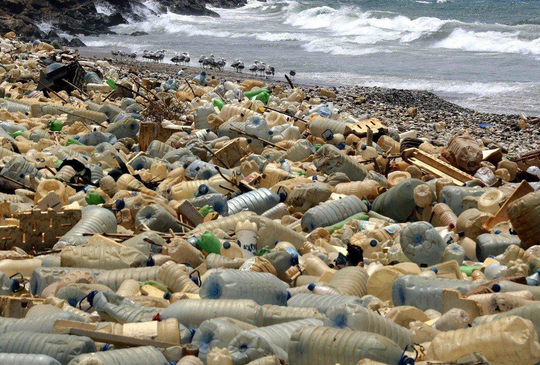 每年約有500萬到1300萬噸的塑膠進入海洋,被海鳥、魚類和其他生物吃下肚。圖/...