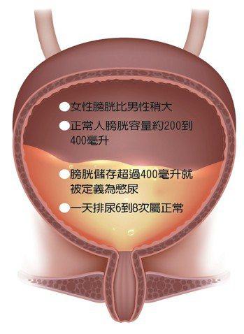 膀胱每天的工作是儲存、排泄經腎臟過濾後所產生的代謝物及體內多餘的水分,書田診所泌...