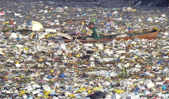 世界經濟論壇前年曾示警,2050年海洋垃圾將比魚多。 (路透)