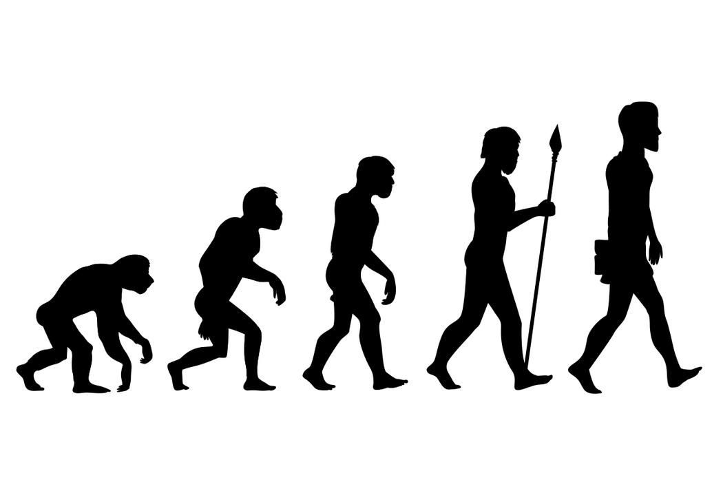 演化成現代人類的人族靈長類大腦,在過去的一百五十萬年間,增大了將近三倍! 圖/i...