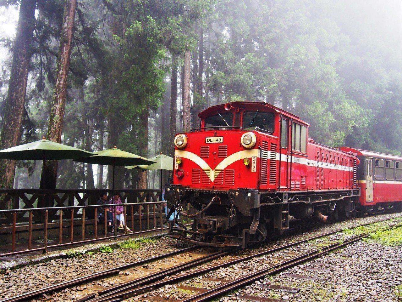 ▲阿里山小火車。(圖/Tripbaa趣吧!亞洲自由行專家)