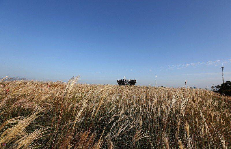 ▲首爾天空公園。(圖/攝影者:Republic of Korea, Flickr...