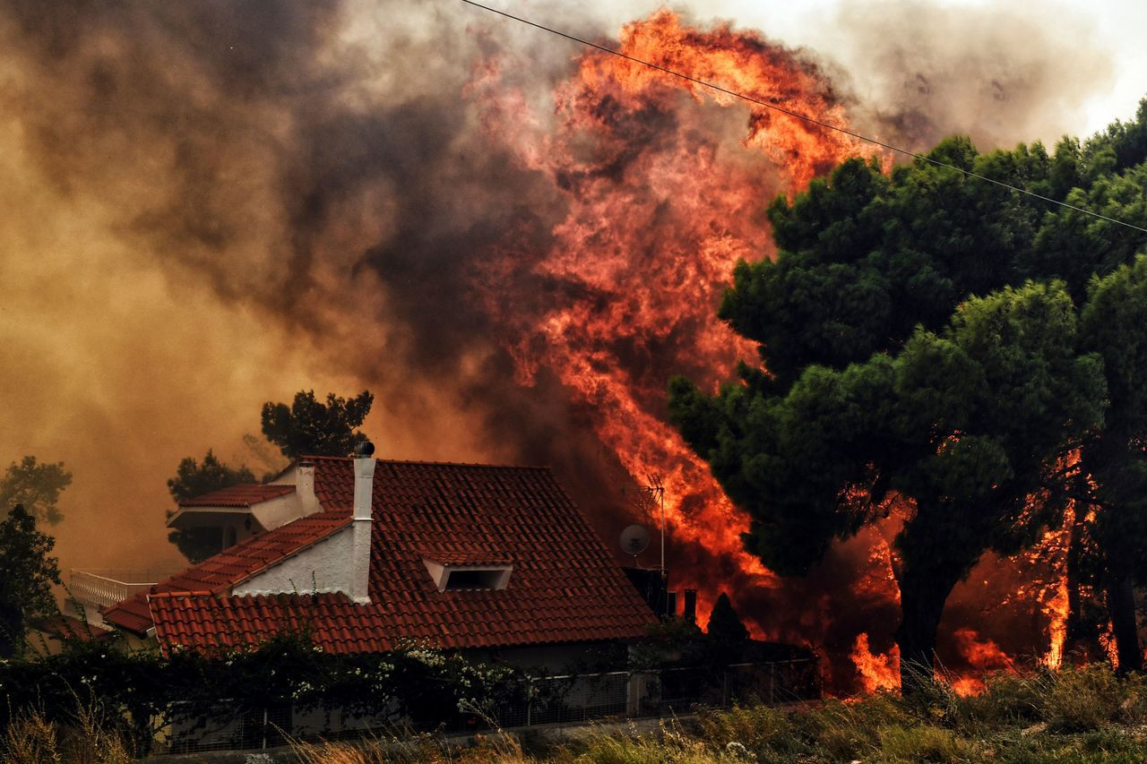 希臘首都雅典兩處森林23日發生大火,強風助長火勢,大火延燒至雅典西郊海濱小鎮基內...