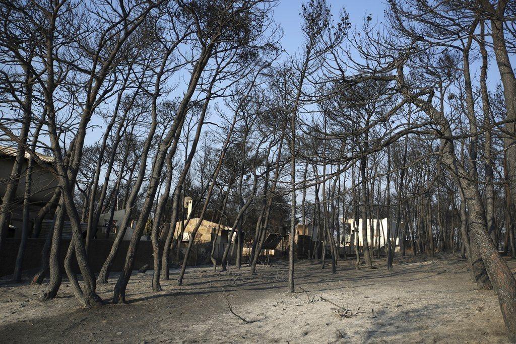 希臘野火已造成至少80人喪生。 美聯社