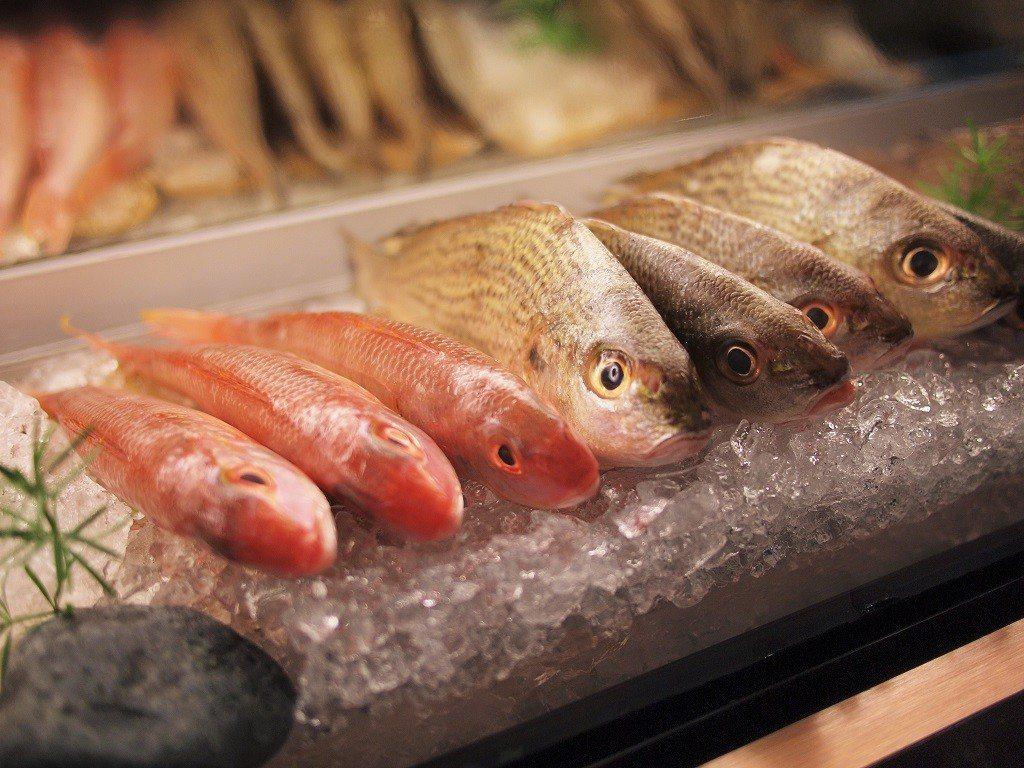 (圖/台灣旅行趣) ▲新鮮的海鮮就在眼前,想吃甚麼指了就有